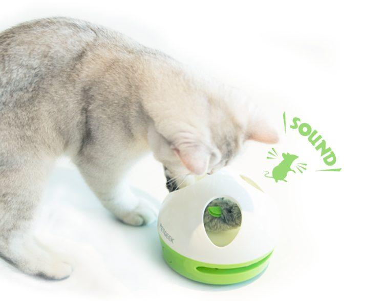 kattenspeeltje met geluid