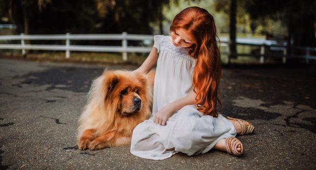 devojčica mazi psa
