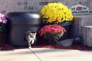 Kitty Tube Gen 3 Insulated Outdoor Cat House