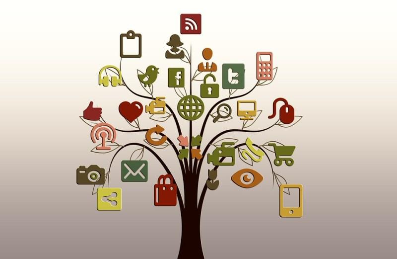 le Petit Actionnaire et les réseaux sociaux