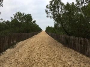 plages chemin-plage-de-la-garonne