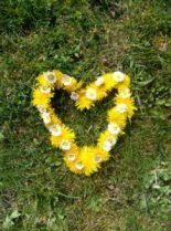 Bonheur: des fleurs pour un coeur