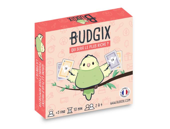 Budgix