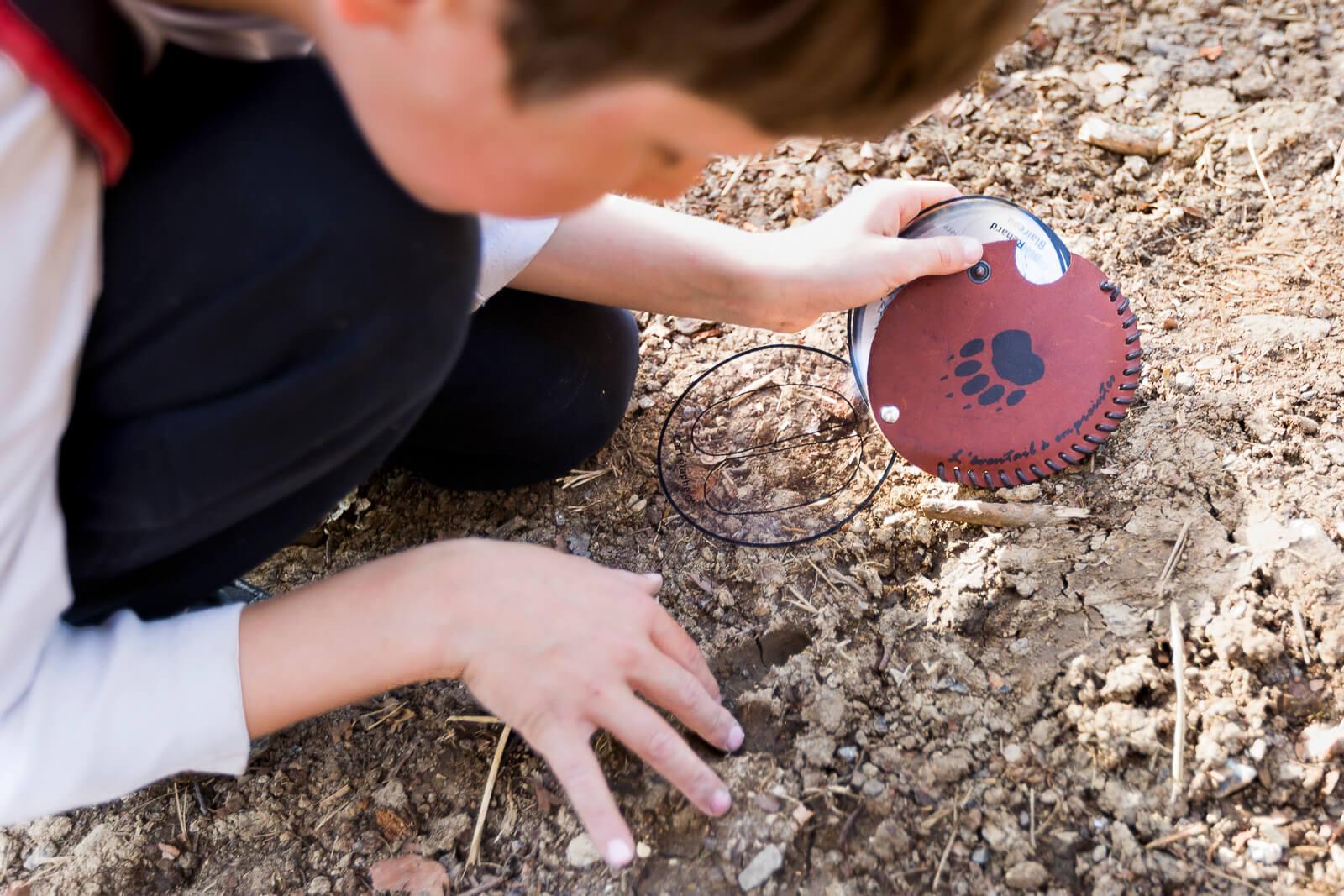 L'éventail à empreintes pour identifier les traces des animaux sauvages