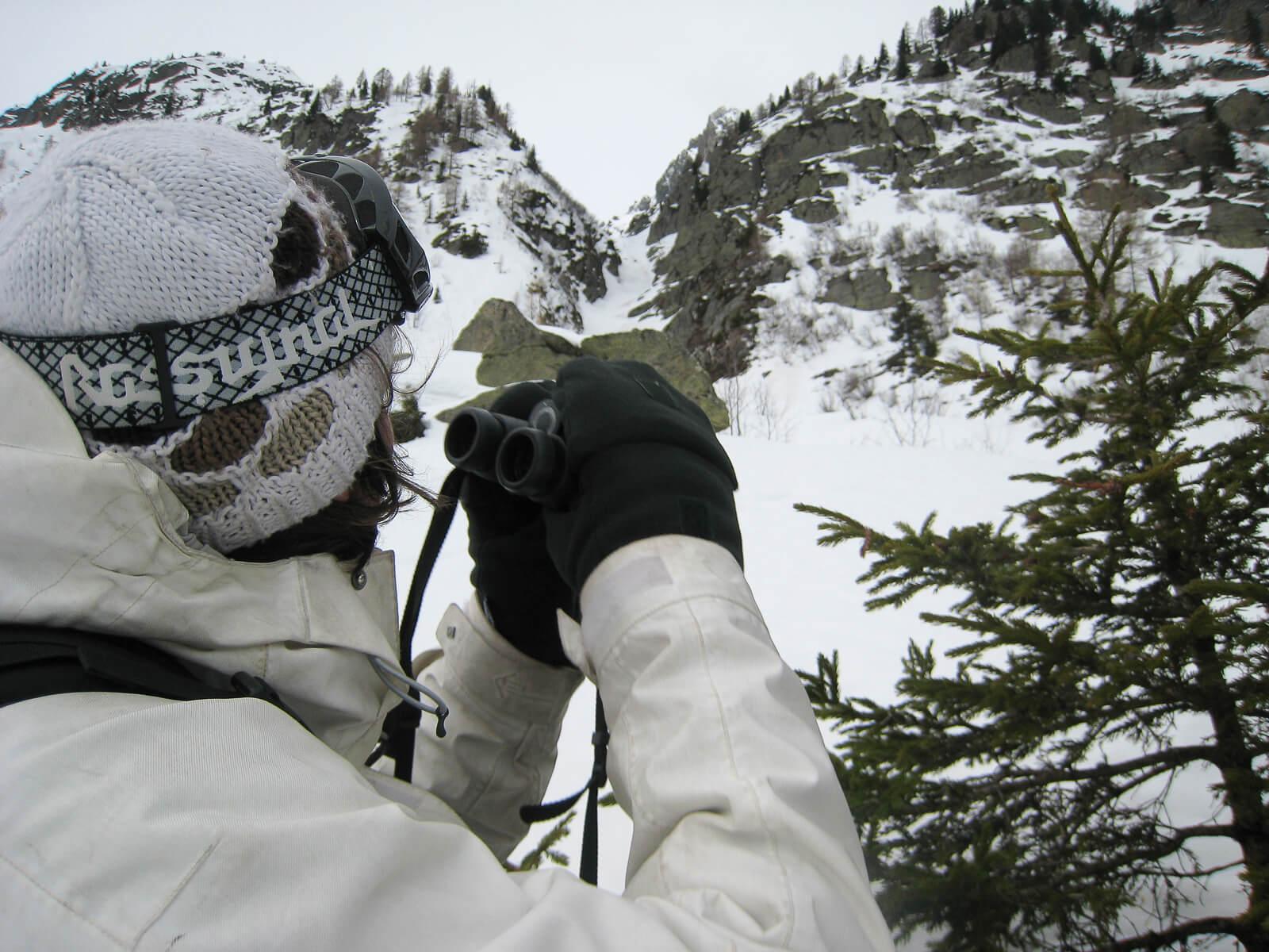 En hiver, pour approcher les animaux, mieux vaut se camoufler en blanc