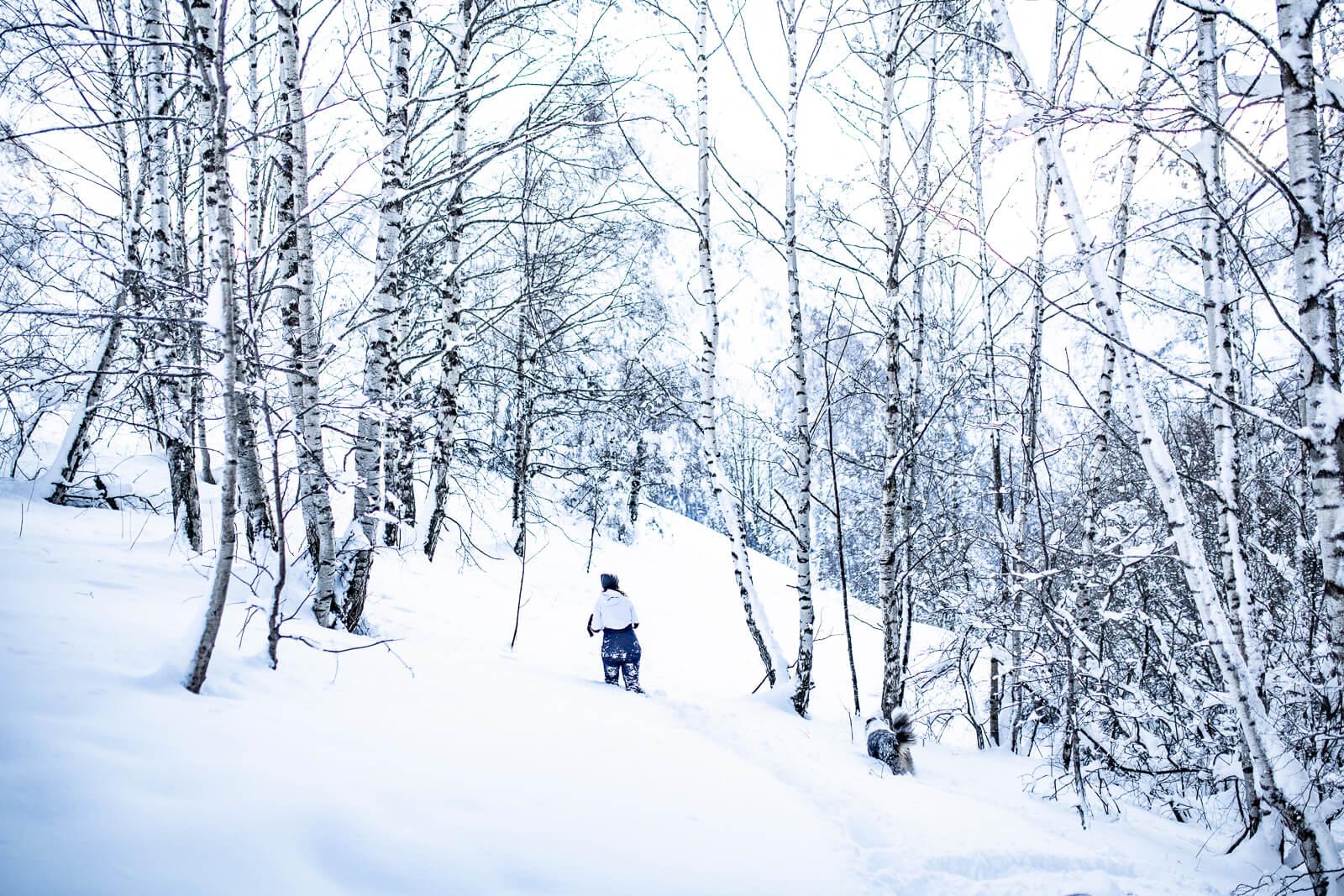 Balade dans la neige Hiver aux Deux Alpes