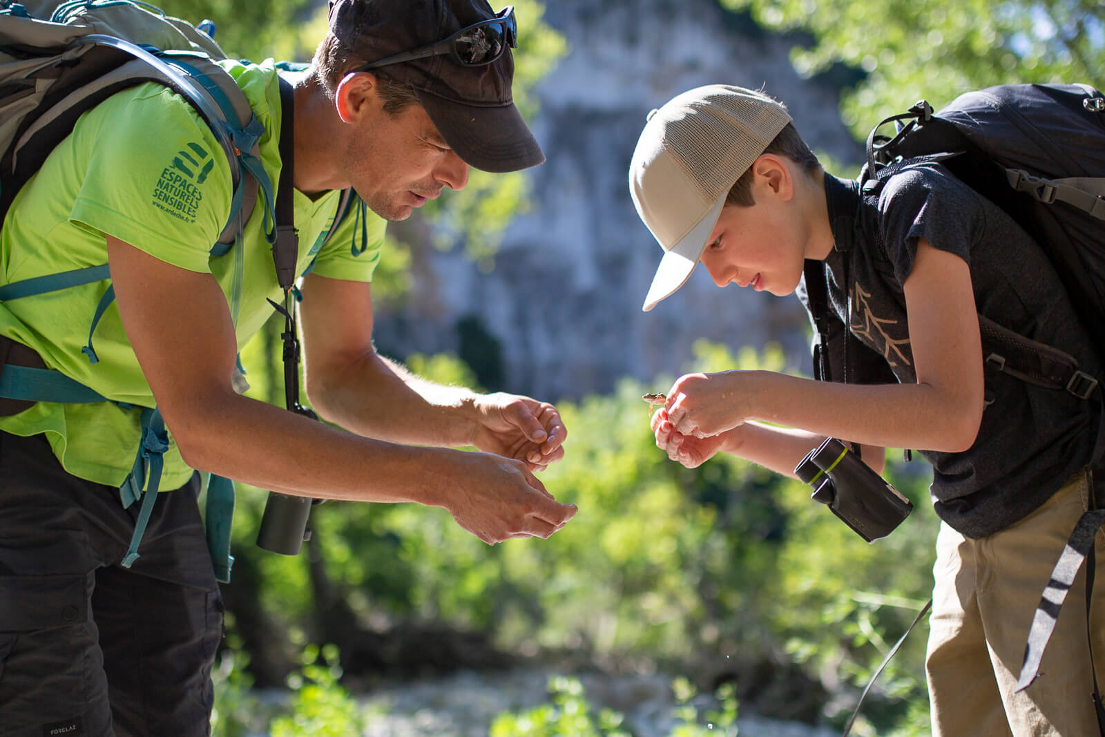 Découvertes avec un Guide de la Réserve Naturelle des Gorges de l'Ardèche