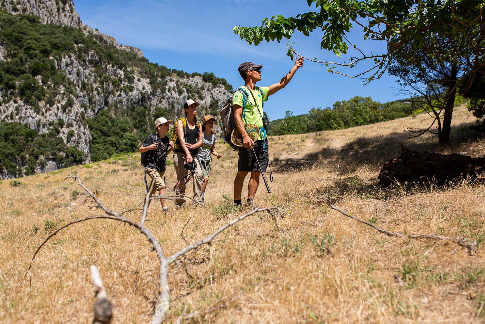 Randonnée en famille dans les Gorges de l'Ardèche avec un guide
