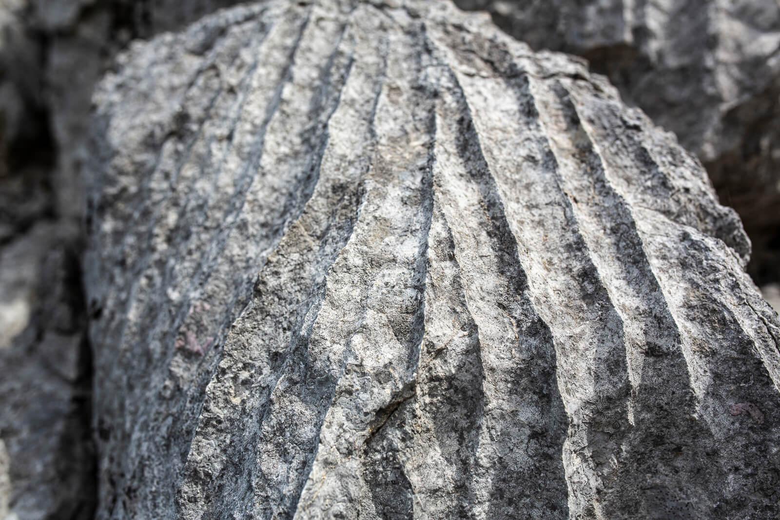 calcaire - Gorges de l'Ardèche