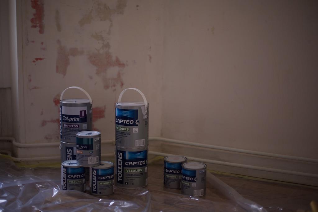 capt o la peinture d polluante de tollens petit champignon de paris. Black Bedroom Furniture Sets. Home Design Ideas