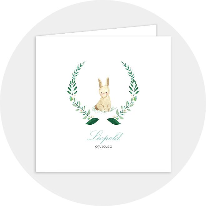 faire-part-elegant-naissance-lapin-garçon