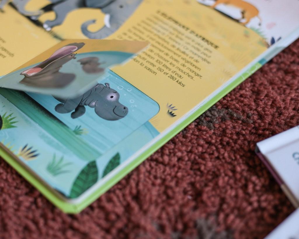 livre-langue-au-chat-bonjour-les-animaux-l-encyclo-des-petiots