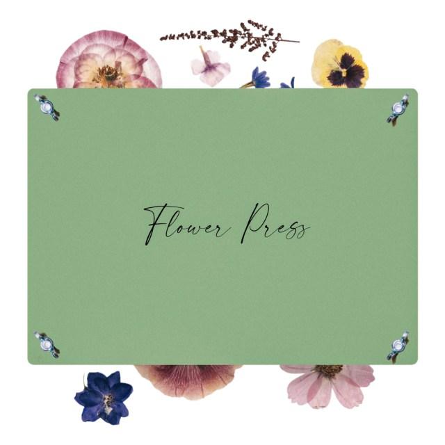 flower-press-nature-king