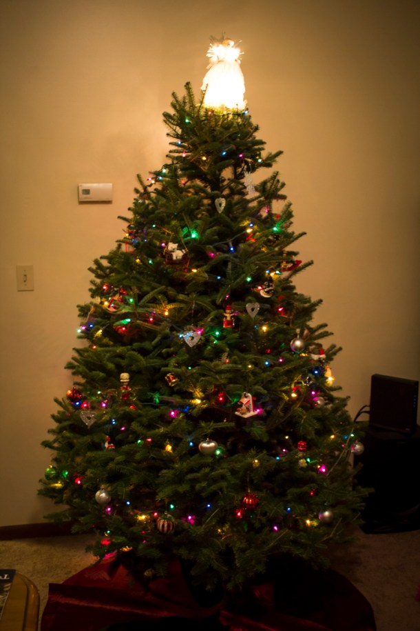 christmastree2015-5