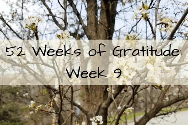 52 Weeks of Gratitude: Week 9