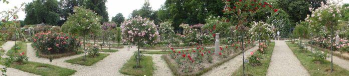 20170602 roseraie vdm 10