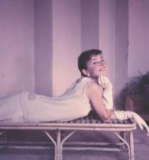 Norman-Parkinson-Audrey-Hepburn--Vogue--1955-207376