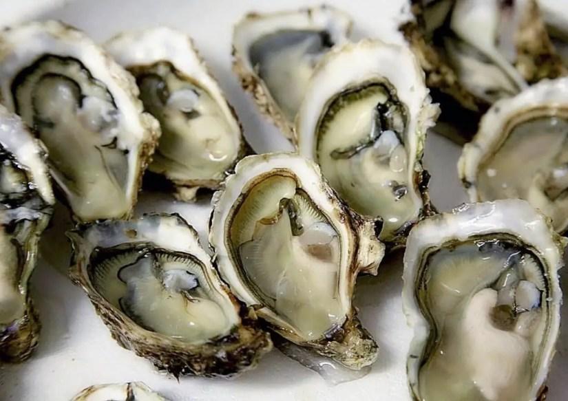 Les huîtres crues à éviter pour les femmes enceintes
