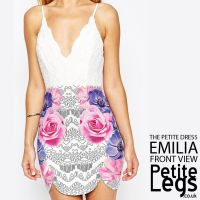 Emilia Petite Height Mini Dress with Floral and Crochet ...