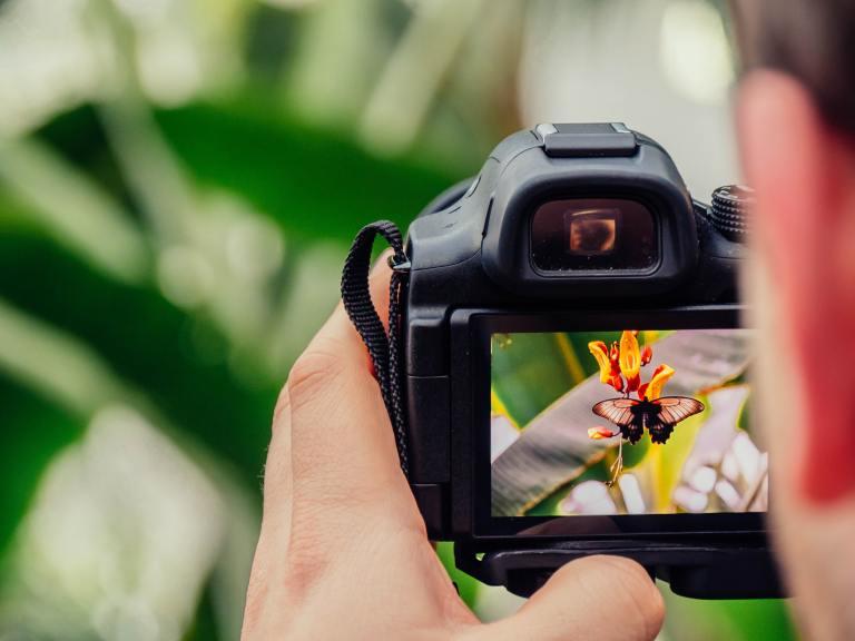 Focus sur appareil photo