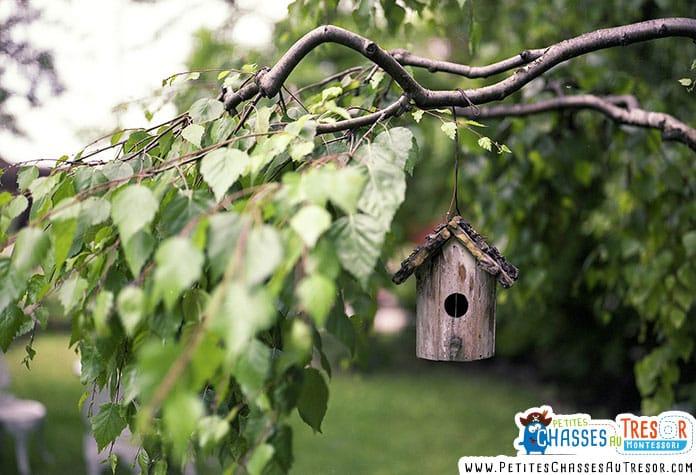 Fabriquer un nichoir à suspendre dans un arbre