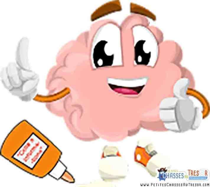 Le cerveau et la colle à informations
