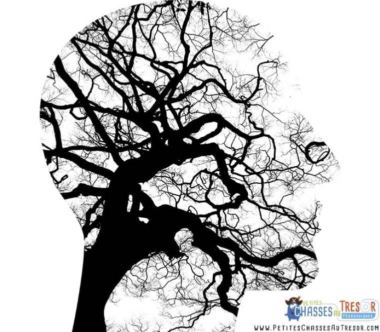 Monsieur Cerveau et la jungle des stimuli
