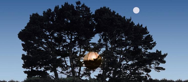 hébergement insolite dans le Morbihan nids arbre île de Groix