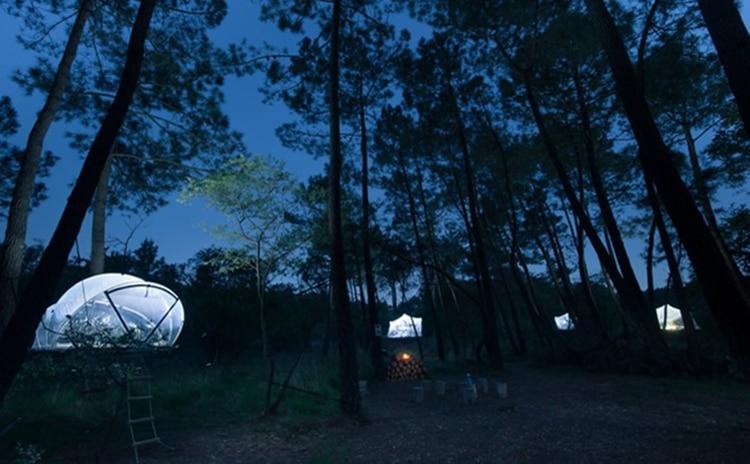 Dihan Evasion Bulle dans les arbres - hébergements insolites dans le Morbihan