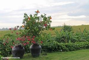 Bali en famille : villa Tangguntiti