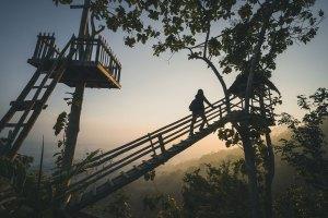 staycation cabane dans les arbres