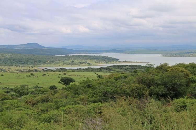 afrique du sud petits globetrotteurs