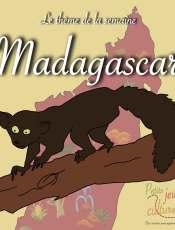 Découvrir la nature de Madagascar