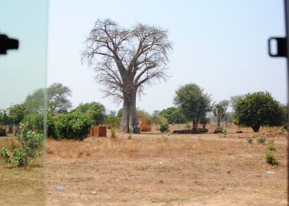 Cinc cèntims sobre Malawi
