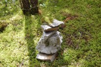 I put the moss on top of these rocks last year and it has grown onto them
