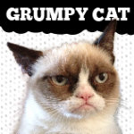 Official Grumpy Cat Store