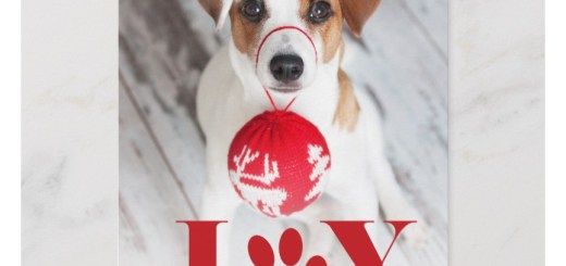 Dog Photo Holiday Card – Custom Christmas Cards