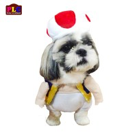 affordable dog clothes philippines