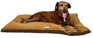 armarkat-pet-bed-w-waterproof-lining