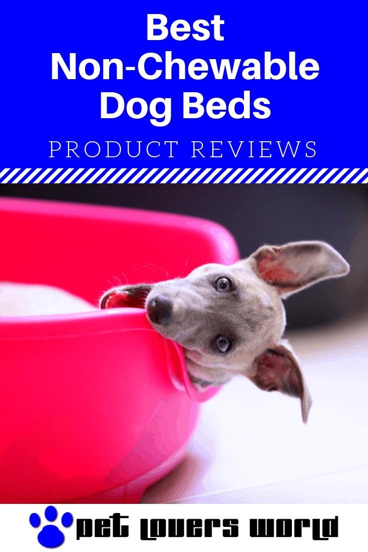 Best Non Chewable Dog Beds Reviews Pinterest Image