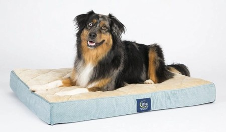 3 Serta Orthopedic Quilted Pillowtop Dog Bed