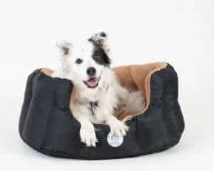 Loving Care Pet Products Ultra Supreme Pet Bed