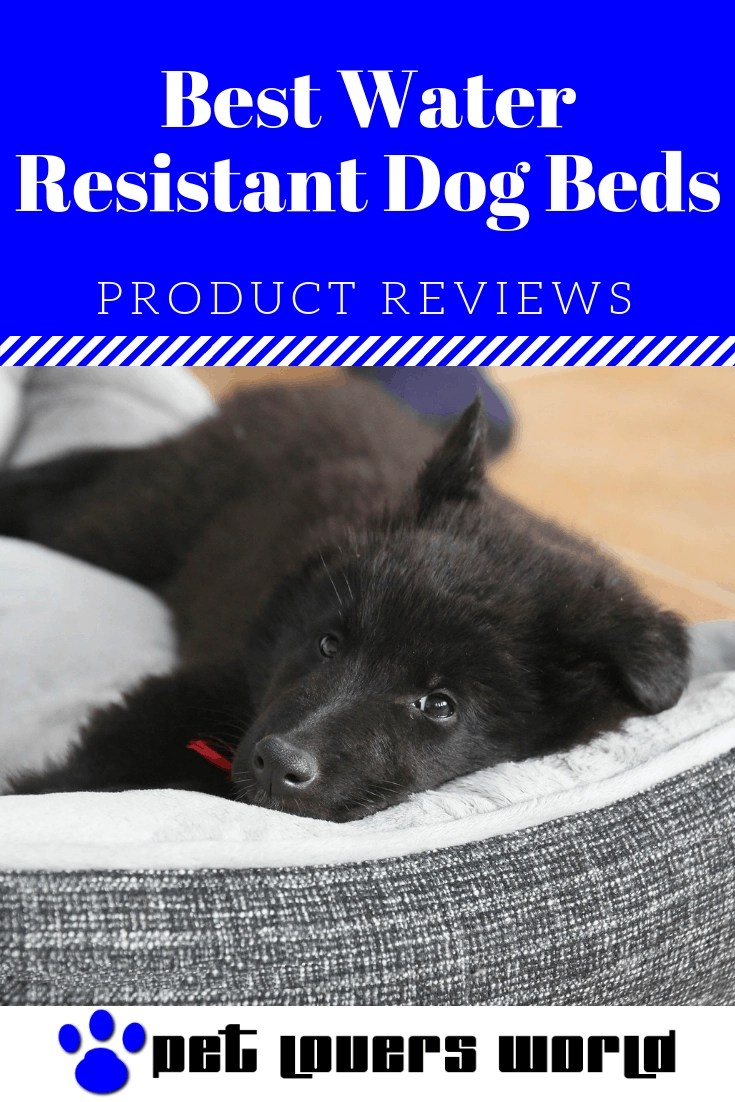 Best Waterproof Dog Bed Reviews Pinterest Image