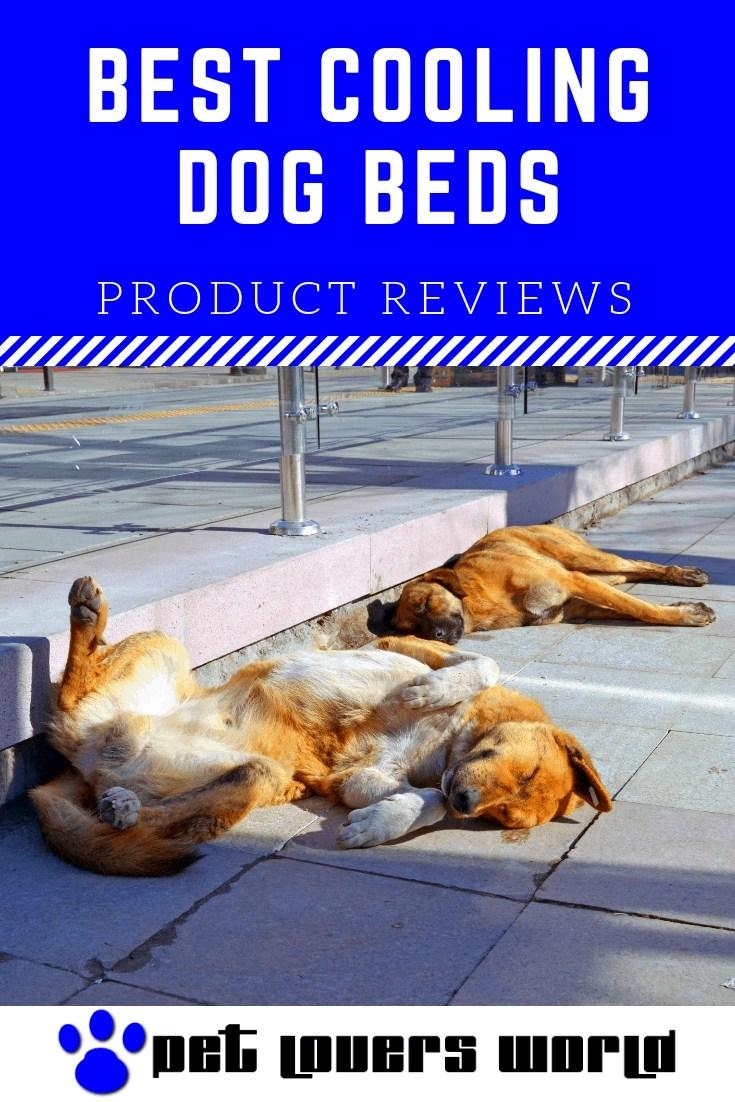 Best Cooling Dog Beds Reviews Pinterest Image