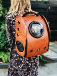 10 Best Cat Carriers Reviews and Buying Guide