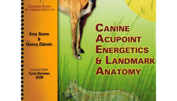 Dog Anatomy: A Coloring Atlas [Book] · PetMassage™ Training and ...