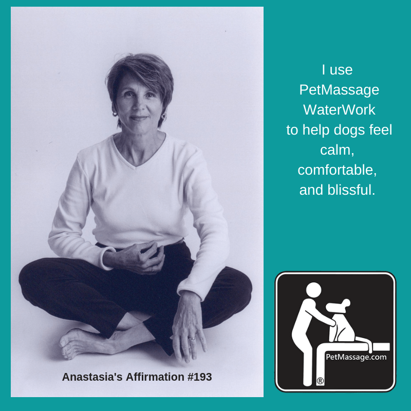 I use PetMassage WaterWork to help dogs feel calm, comfortable, and blissful.