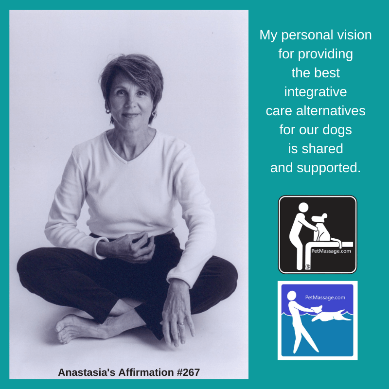 _My personal vision for providing the best integrative care alternatives for our dogs is shared and supported. (1)
