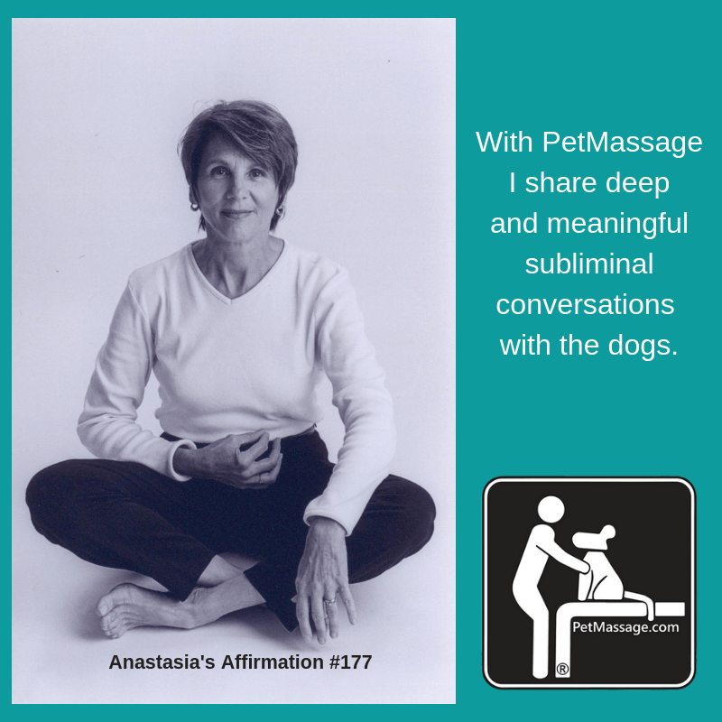 With PetMassage I share deep and meaningful subliminal conversations with the dogs.