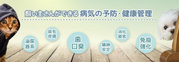 supplement-mailmaga20151127-24029-h9pbxi